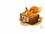 Fox and tangerins