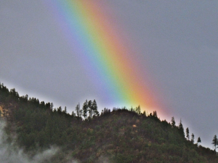 on the river road - rainbow, trees, mountain, sky