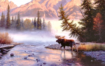 Into the Mist - Moose