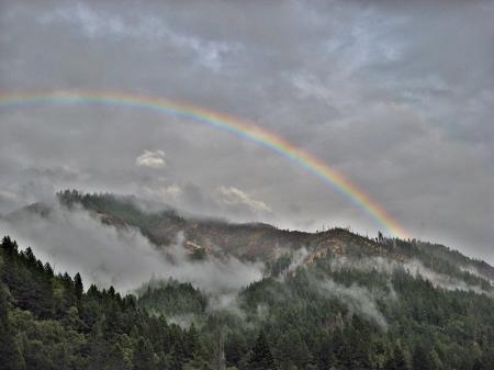 in the mists - mist, sky, rainbow, mountains, trees