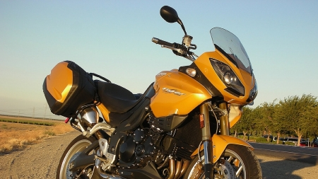 triumph tiger - triumph, bike, tiger, motorcycle