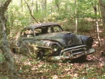 abandoned car in the woods