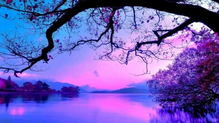 Purple landscape - image, beautiful, magic nights, picture, photography, nice, calm, 2560x1440, river, mirror, purple world, blue, amazing, reflex, photo, widescreen, lakescape, rederized, sky, lake, panorama, leaf, tree, water, riverscape, cool, purple, awesome, nature, reflections, landscape
