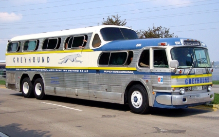 greyhound to chicago - greyhound, coach, chicago, bus