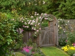 garden gate with pink rose arch