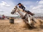 Cowgirl in a Barrel Race