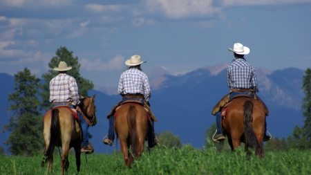 Cowgirl and Her Pardners Riding Back to the Ranch - Mountains, Cowgirl, Heading Home, Grass, Horses, Cowboys