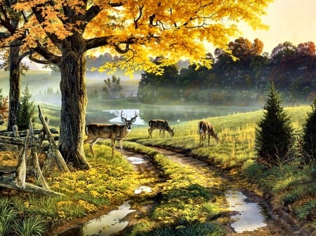 Bend in the Road - Deer - art, buck, beautiful, illustration, artwork, deer, animal, doe, painting, wide screen, wildlife, nature
