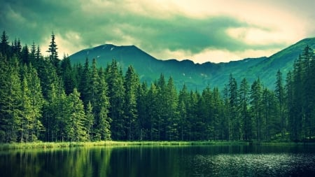 Green lake forest - image, clouds, nice, scenario, green world, sky, pines, water, cool, mountains, awesome, landscape, scenic, 1920x1080, renderized, beautiful, picture, photography, forestscape, green, moss, mirror, scenery, blue, photo, forest, amazing, reflex, view, colors, lake, reflections, scene