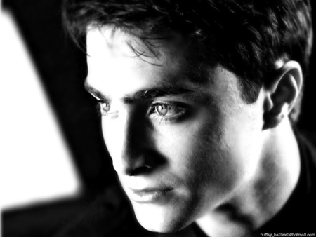 Daniel Radcliffe - daniel, british, harry potter, english, black and white, daniel radcliffe, radcliffe, dan