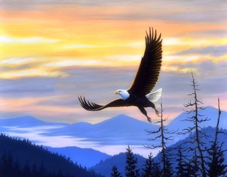 Conquered - eagle, love four seasons, attractions in dreams, sky, clouds, paintings, mountains, flying, summer, nature, animals