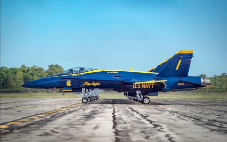 Blue Angels Squad ~ Precision Parking - military, usaf, aircraft, jets