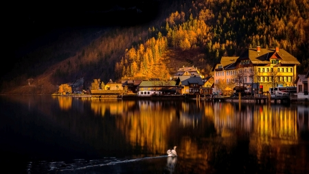 Reflections - town, fall, river, autumn, mountain, swan, hills, darkness, reflection, lake