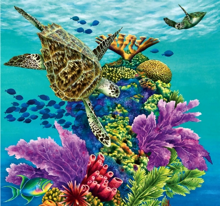 Sea Summit C - art, sea turtles, coral, beautiful, turtle, illustration, artwork, painting, wide screen, nature