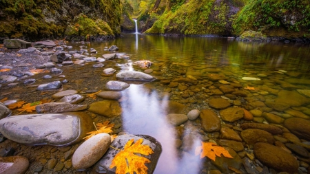 Small Waterfall Pond - stones, rocks, yellow leaves, waterfall, moss, nature, autumn, pond