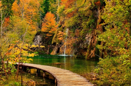 Autumn waterfall - fall, rocks, forest, autumn, colors, foliage, waterfall, beautiful, trewes, walk
