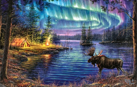 Northern Lights - Moose - art, northern lights, moose, beautiful, illustration, artwork, animal, Aurora Borealis, forces of Nature, painting, wide screen, wildlife, nature