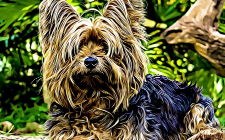 FRACTAL YORKIE - ABSTRACT, YORKIE, FRACTAL, DOG