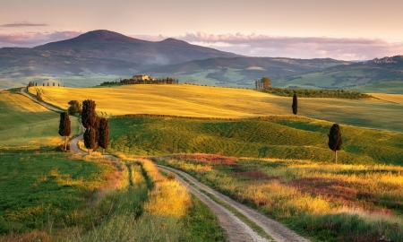 Landscape of Tuscany - Hills, Nature, Landscapes, Fields, Italy
