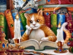 The Literate Cat F