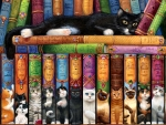 Cat Bookshelf Again