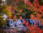 Autumn Waterfall in New England