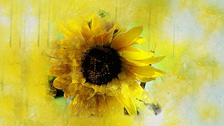 Sunflower Art - Flowers & Nature Background Wallpapers on ...