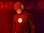Barry Allen- The Flash