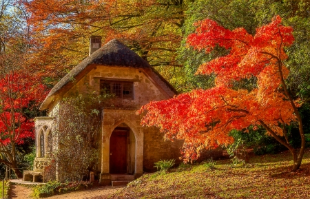 Stourhead gardens, Wiltshire, England - forest, fall, autumn, colors, beautiful, park, trees, foliage, England, garden, chapel