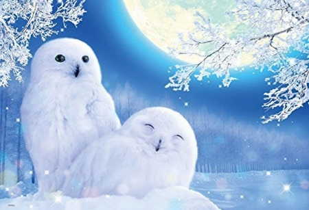 Snowy Owls Under Moonlight Fantasy Abstract Background