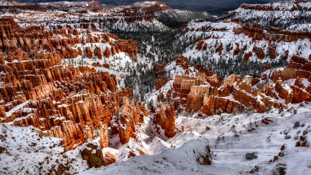 Inspiration Point - National Park, Utah, scenery, landscape, photography, wide screen, beautiful, photo, USA, nature