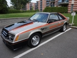 1979 Ford Mustang Pace Car Edition 302ci V8 3-Speed Automatic
