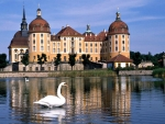 Moritzburg Castle,Germany
