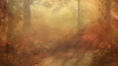 Autumn Softness - forest, fall, autumn, woods, soft, trees, subtle, pathway, muted