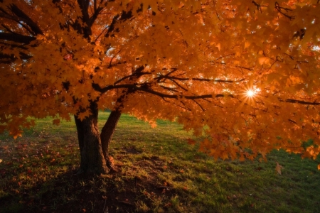 Sunrise In Iowa - Sunrise, Autumn, Nature, Iowa
