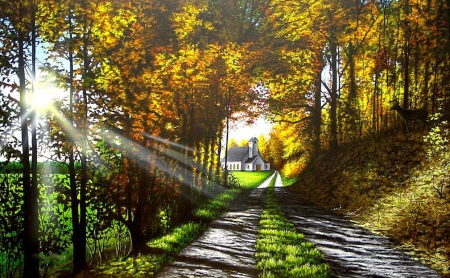 The Roads We Choose - autumn, sunrays, shadows, church, trees, street