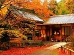 Japanese house in the fall garden