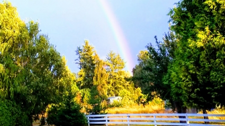 Fall Rainbow - fall, sky, Firefox Persona theme, rainbow, trees, fence, photo, autumn