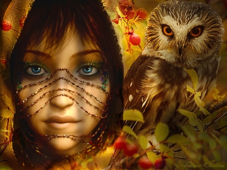 Owl - owl, bird, looks, tones, beautiful, woman, animal