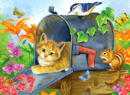 Waiting for the mail - draw and paint, squirrel, mail, colors, love four seasons, butterflies, spring, cat, paintings, bird, summer, flowers, kitten, animals