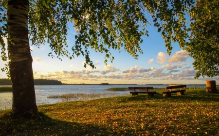 By Lake Aluksnes, Latvia - benches, Latvia, birch, lake, landscape