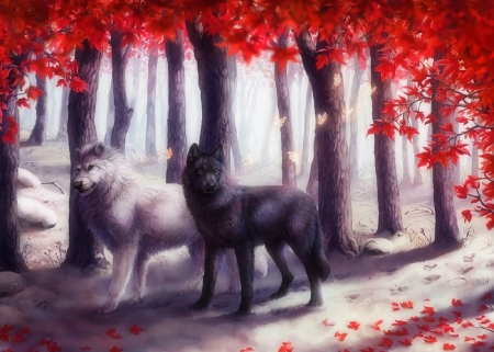 Black & White in Autumn - fall season, autumn, love four seasons, black, attractions in dreams, digital art, leaves, paintings, wildlife, forests, wolves, white, drawings, animals