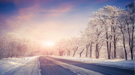 Shadows of Winter - snow, shadows, sunrise, road, trees, Firefox Persona theme, winter, cold