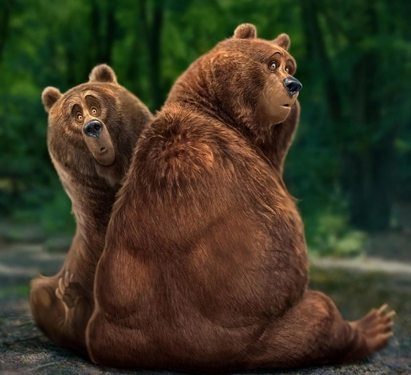 Funny bears - brown, silly, bear, beasts, aaron blaise, green, funny, face, couple