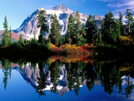 Mirror Reflections - forest, mountains, mount shuksan, nature, reflection, trees, lake, mirrored