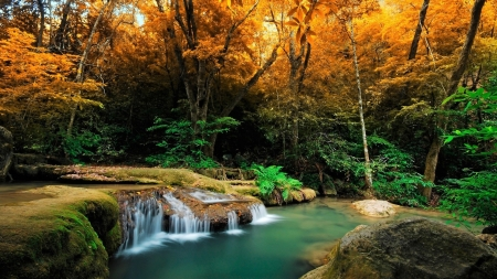 Waterfall in Tropical Autumn Forest - Nature, Autumn, Waterfalls, Fall, Forests