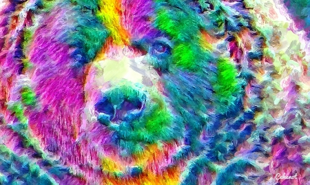 Bear - colorful, art, bear, yellow, cehenot, abstract, animal, green, painting, face, pictura, pink, blue