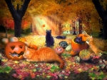 Cats in Autumn