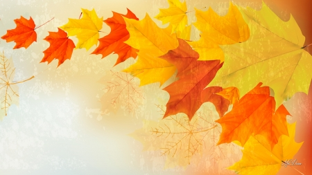 Forever Falling Leaves - falling, fall, gold, maple, autumn, wind, orange, blowing, leaves, Firefox Persona theme, nature