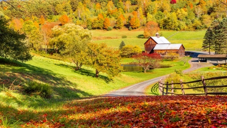 Autumn In New England Other Nature Background Wallpapers On Desktop Nexus Image 2312904
